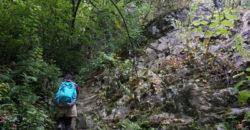 2018年8月4日 山へ水晶狩りに。