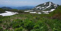 2019年6月2日 焼石岳へ東成瀬口コース状況