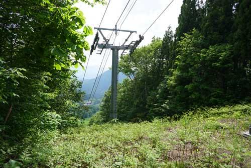 2019年6月9日 森吉山の廃道下山