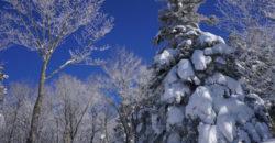 孫六温泉から乳頭山界隈へスノーシュー