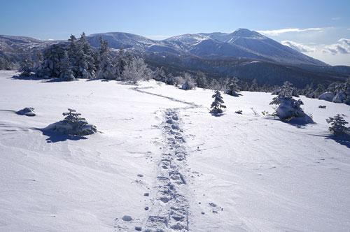 乳頭山界隈スノートレッキング、記事アップしました