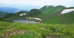2020年7月26日 鳥海湖ぐるっと花のハイキング