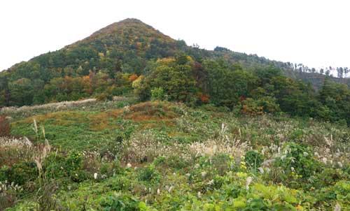 2020年10月25日 平鹿金峰山の新ルート偵察