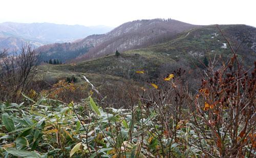 晩秋の黒森山へぶらり