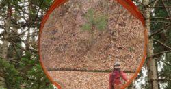 2020年11月22日横手いこいの森を歩きまくった。2。