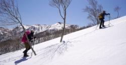 2021年4月11日 山伏岳