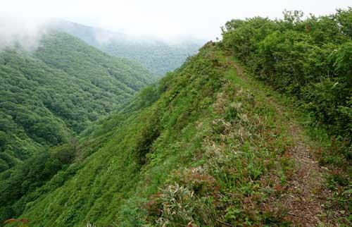 痩せ尾根の登山道