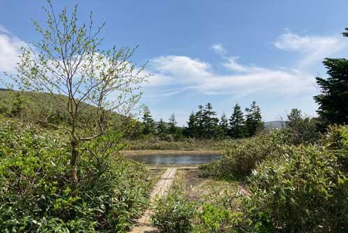 小屋の前の池