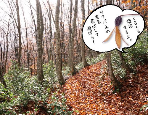 金峰山イメージ